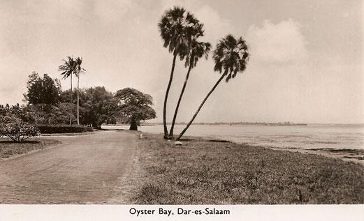 Dar-Oyster-Bay