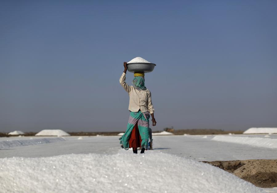 A labourer carries salt in a container on a salt pan in Little Rann of Kutch in the western Indian state of Gujarat March 2, 2014. Salt pans begin pumping out sub-soil brine water towards the end of the monsoon in October and lasts till end-March, after which it is dried till crystals are formed. The crystals are collected by mid-June and it takes another eight months to process them to make edible salt. India is the third largest producer of salt in the world after the U.S. and China. REUTERS/Ahmad Masood (INDIA - Tags: BUSINESS EMPLOYMENT)